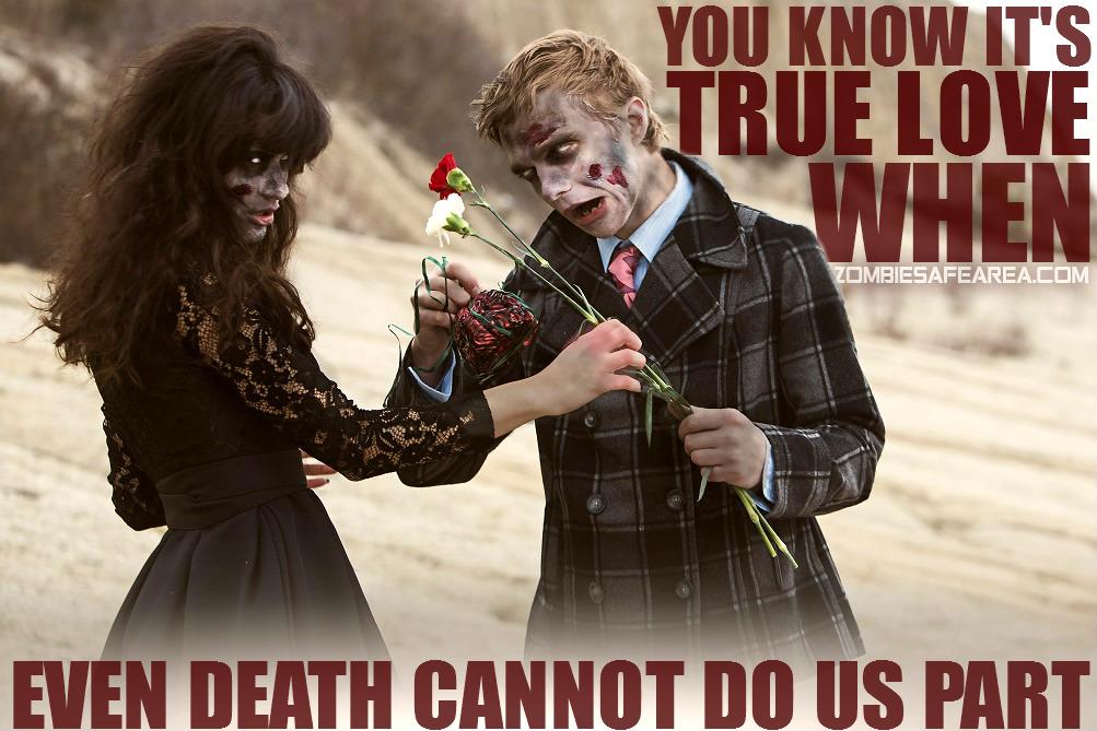 #ValentineDay ZSA